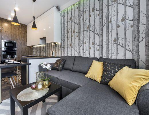 Apartemen Studio: Desain yang Nyaman & Multifungsi
