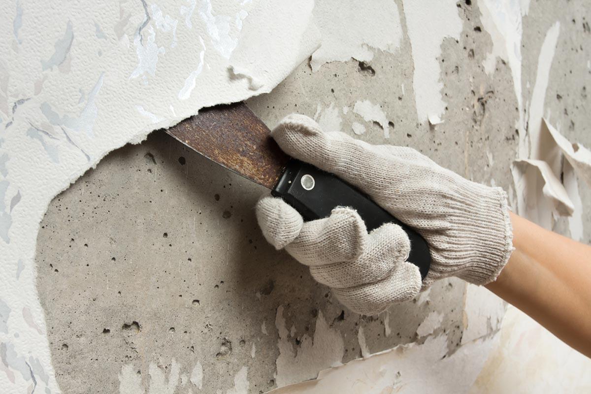 jangan pasang wallpaper di dinding lembap