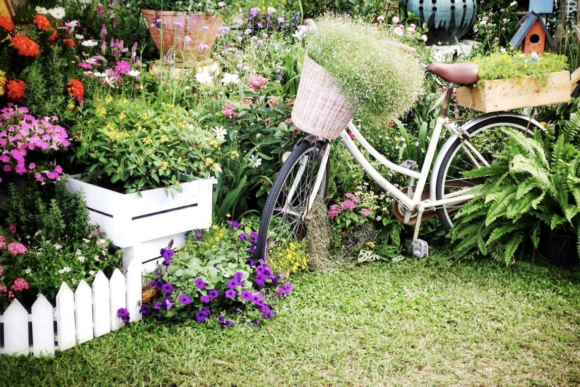 Halaman Rumah Unik dan Minimalis dengan Sepeda Tua