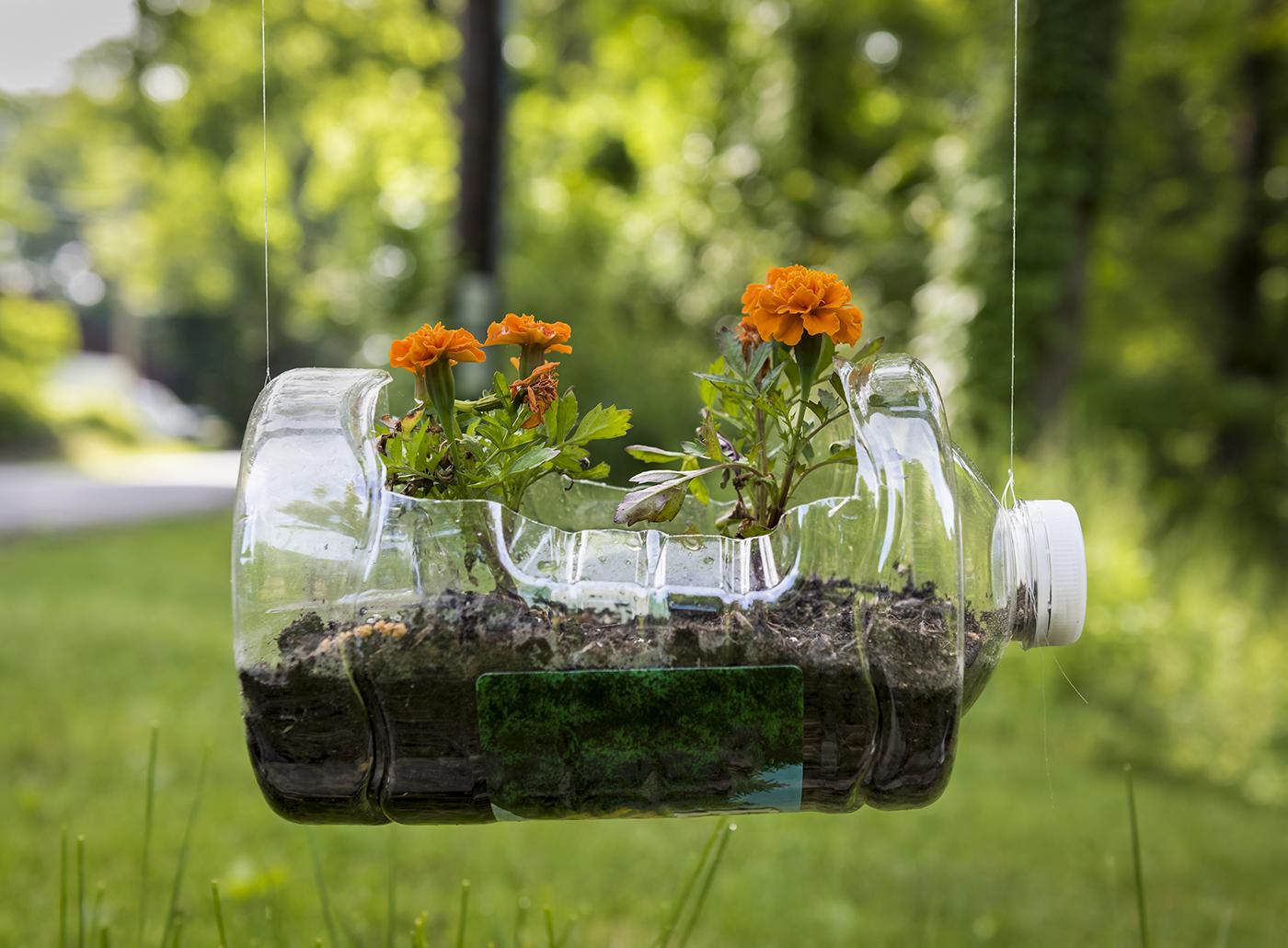 Inspirasi halaman rumah unik mini dari botol plastik