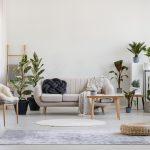 7 Tips Menata Desain Interior Urban Jungle untuk Rumah