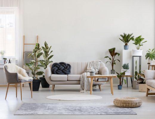 Desain Interior Urban Jungle dalam Rumah Modern