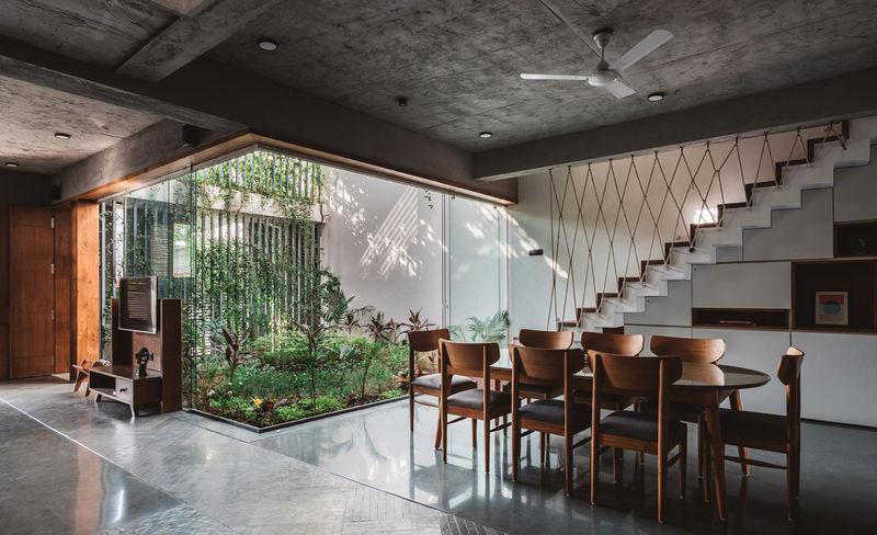 rumah jungalow tanaman indoor