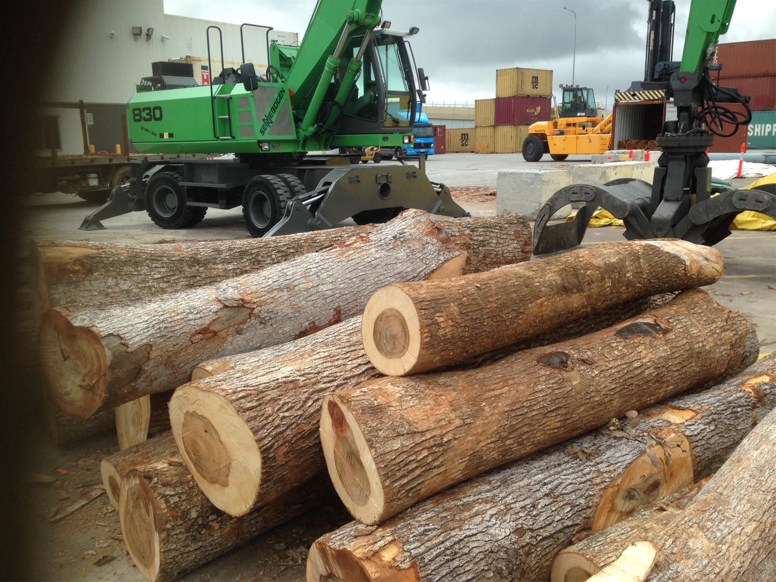 furniture kayu kamper