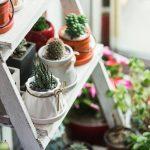 6 Ide Aktivitas Seru yang Bisa Dilakukan Selama di Rumah